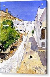Cuesta De La Atalaya Nijar Acrylic Print by Margaret Merry