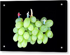 Cultivation On Grapes Acrylic Print by Paul Ge