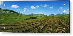 Cut Turf On A Landscape, Connemara Acrylic Print by The Irish Image Collection