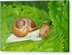 Cute Baby Boy With A Snail Shell Acrylic Print
