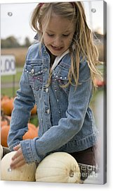 Cute Little Girl Picking A Pumpkin Acrylic Print by Christopher Purcell