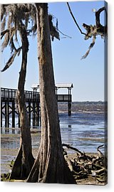 Cypress And Dock At Low Tide Acrylic Print by Tiffney Heaning