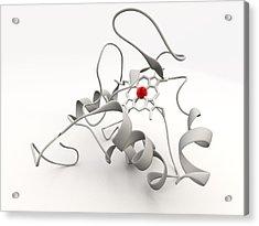 Cytochrome C Acrylic Print by Phantatomix