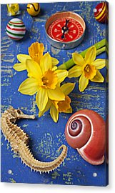 Daffodils And Seahorse Acrylic Print by Garry Gay