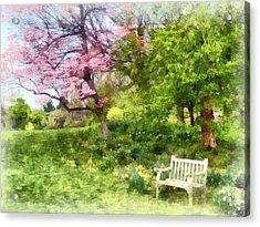 Daffodils By Bench Acrylic Print by Susan Savad