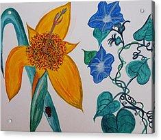 Daffyclem Acrylic Print by Joy Sparks