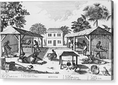 Daily Life For Enslaved Africans Acrylic Print by Everett