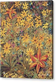 Daiseys Acrylic Print by Jim Barber Hove