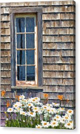 Daisies And Daylilies Acrylic Print by Verena Matthew