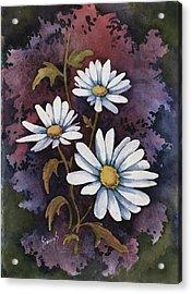 Daisies IIi Acrylic Print by Sam Sidders