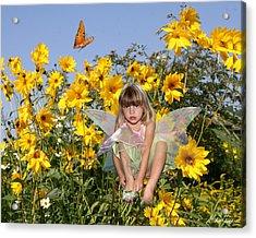 Daisy Faery Acrylic Print