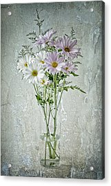Acrylic Print featuring the photograph Daisy by James Bethanis