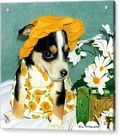 Acrylic Print featuring the drawing Daisy-mae Dawg by Ana Tirolese