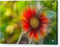 Acrylic Print featuring the photograph Dalia Pseudo Fractal by Lynne Jenkins