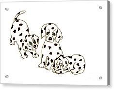 Dalmatian Puppies Acrylic Print