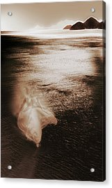 Dance Acrylic Print by Li   van Saathoff