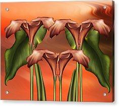 Dance Of The Calla Lilies - Abstract Realism Design Acrylic Print by Georgiana Romanovna