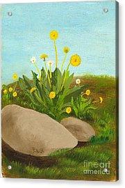 Dandelion Field Acrylic Print
