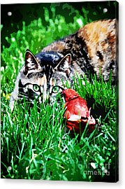 Acrylic Print featuring the photograph Dangerous Friends by Laura Brightwood
