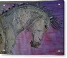 Dapples Acrylic Print by Judi Goodwin