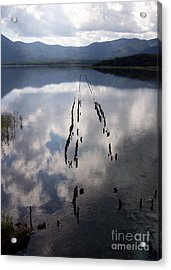 Acrylic Print featuring the photograph Dark Reflections by Cheryl McClure