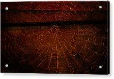Acrylic Print featuring the photograph Dark Web by Robin Dickinson