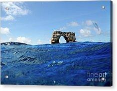 Darwin's Arch By Sea Level Acrylic Print by Sami Sarkis