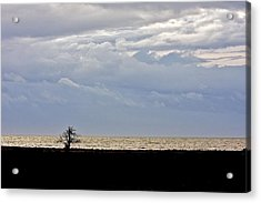 Acrylic Print featuring the photograph David And Goliath  by Scott Holmes