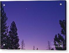 Dawn From My Window Acrylic Print by Janie Johnson