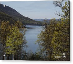 Day At The Lake Acrylic Print by Chad Thompson