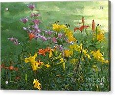 Daylilies Acrylic Print