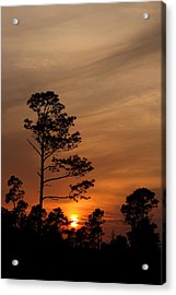 Acrylic Print featuring the photograph Days Dusk by Cindy Haggerty