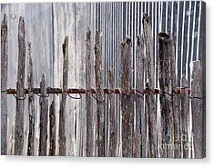 De-fence Acrylic Print