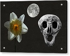 Death And The Daffodil  Acrylic Print by Eric Kempson