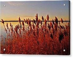 December Sunrise ... Acrylic Print by Juergen Weiss