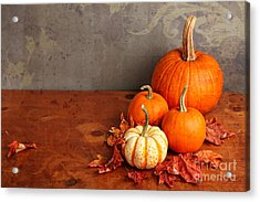 Acrylic Print featuring the photograph Decorative Fall Pumpkins by Verena Matthew