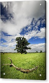 Acrylic Print featuring the photograph Deep Blue Wonder by John Chivers