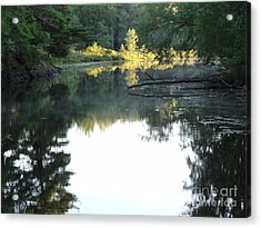 Deer River In Early Sun Acrylic Print