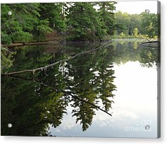 Deer River Reflection Acrylic Print