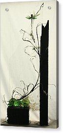 Defrost Acrylic Print by Mariann Taubensee