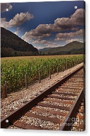 Acrylic Print featuring the photograph Del Rio Tennessee by Janice Spivey