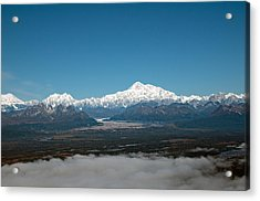 Acrylic Print featuring the photograph Denali Park by Gary Rose