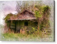 Derelict Shed Acrylic Print by Susan Isakson