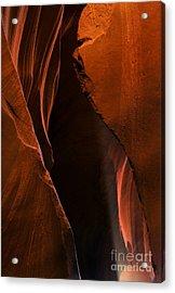 Desert Beam Acrylic Print by Mike  Dawson