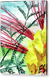Desert Bird Of Paradise Acrylic Print