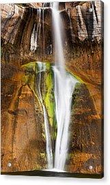 Desert Cascade  Acrylic Print by James Marvin Phelps