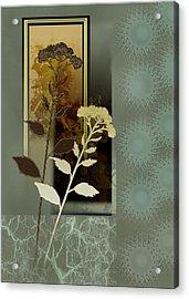 Desert Flowers Acrylic Print by Regina Femrite