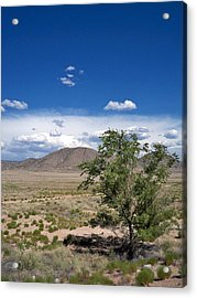 Acrylic Print featuring the photograph Desert In New Mexico by Rick Frost