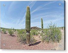Desert Monument Acrylic Print