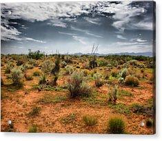 Desert Of New Mexico Acrylic Print by Thomas  MacPherson Jr